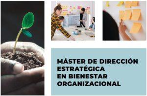 Master de direccion estrategica en bienestar organizacional