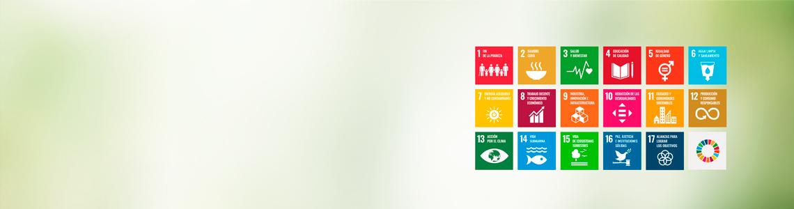 Consultoría de sostenibilidad